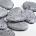 Suikerbonen Vanparys stone glanzend