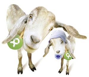 """""""Oxfam Pakt Uit"""""""